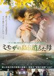 『ミモザの島に消えた母』~「サラの鍵」原作者タチアナ・ド・ロネのベストセラー小説を映画化